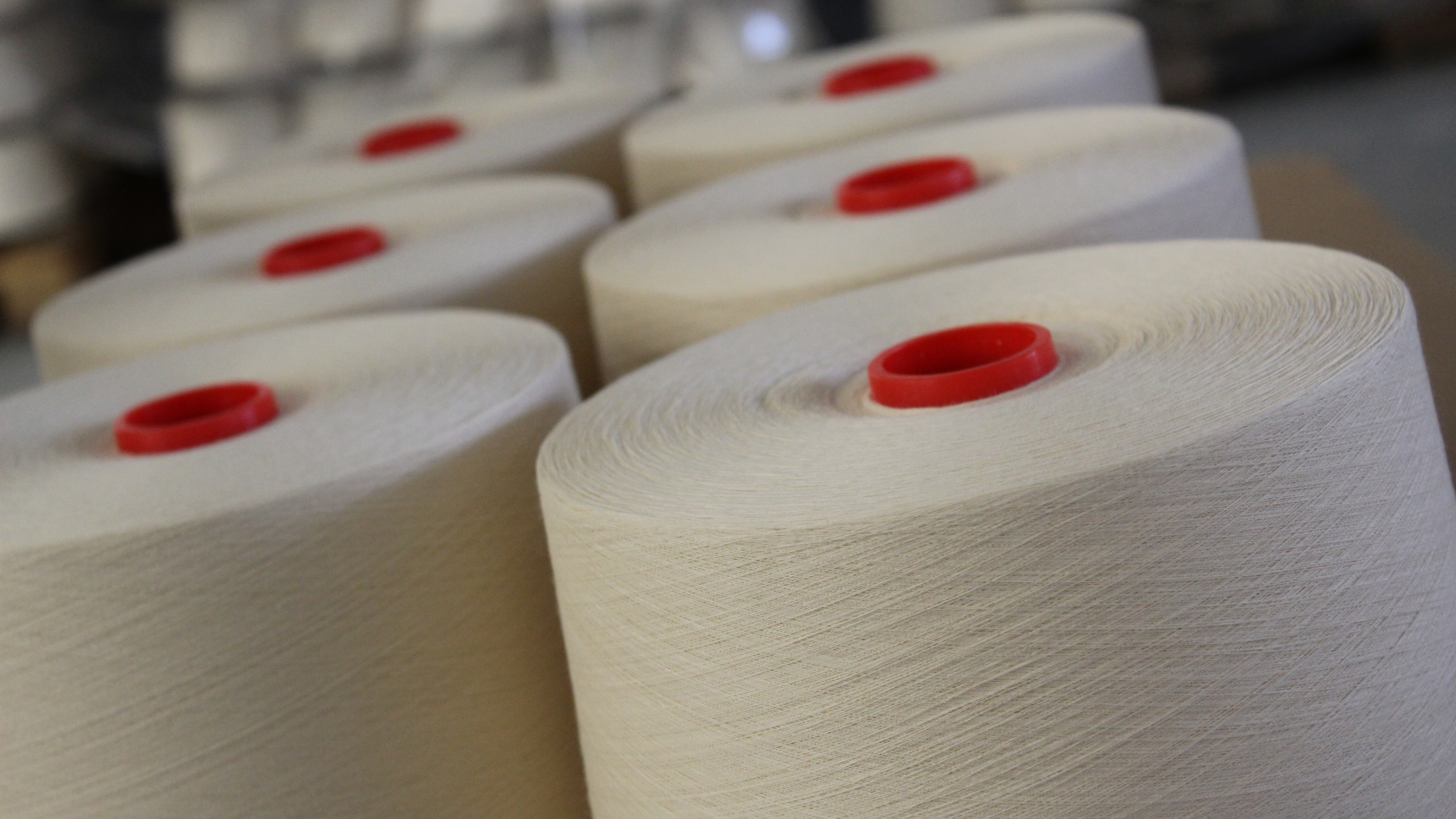 Combed compact ringspun cotton yarns made with premium extra